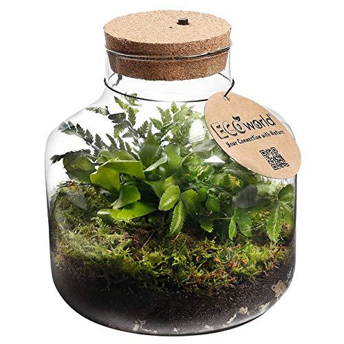 Ecoworld Jungle-Biospähre