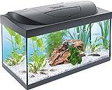 Tetra Regular Starter Line Aquarium-Komplettset mit LED-Beleuchtung stabiles 54 Liter Einsteigerbecken mit Technik, Regular Starterline, Futter und Pflegemitteln*